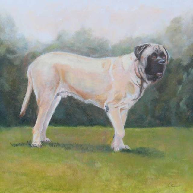 Bruno, 20 x 20 inches, oil on panel. SOLD Private Commission